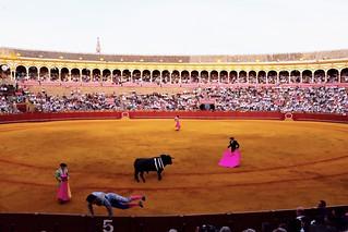 #06 Sevilla, La Maestranza