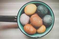 Naturally dyed (Kilkennycat) Tags: canon easter eggs pancake dyed 500d 24mm28 zombieday kilkennycat naturallydyed coffeedye turmericdye t1i ryanconners blackberrydye blueberrydye cranberrydye