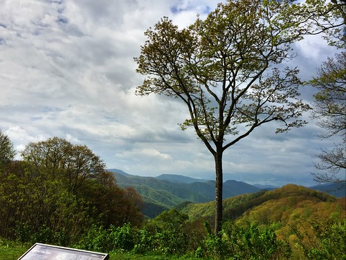 """Smoky Mountain National Park • <a style=""""font-size:0.8em;"""" href=""""http://www.flickr.com/photos/20810644@N05/17334092034/"""" target=""""_blank"""">View on Flickr</a>"""