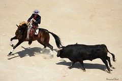 Diego Ventura (Bernard Bost) Tags: corrida gard nmes languedocroussillon rejoneador rejn friadenmes diegoventura