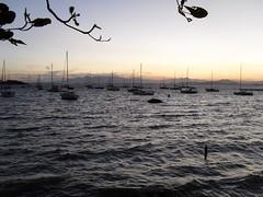 (Aleh Cemy) Tags: sunset brazil brasil boats barco florianópolis pôrdosol