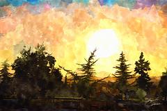 Parque Rojas Magallanes (Diez Visualcreativo) Tags: chile parque santiago luz digital photoshop atardecer la foto arboles arte florida crepusculo alejandro contra pintura magallanes rojas diez fotopintura photoshopcreativo visualcreativo