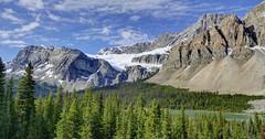 Crowfoot Glacier Viewpoint, Banff National Park, Alberta Canada (renedrivers) Tags: crowfootglacierviewpoint banffnationalpark albertacanada rchan415 renedrivers canada alberta rockymountain nature landscapes