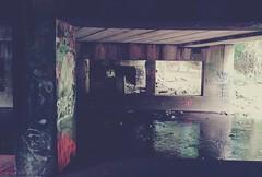 Tacony Creek Park (phillytrax) Tags: philadelphia philly pa pennsylvania cityofbrotherlylove 215 city urban usa america unitedstates metropolis metropolitan instagram olney taconycreek taconycreekpark taborroad graffiti tagging vandalism instagramapp square squareformat iphoneography uploaded:by=instagram reyes