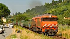 Caminha (***REGFA***) Tags: renfe medlog portugal tren comboio espaa espanha madera 1945 caminha