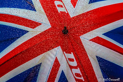 203/366 U Is For.... Umbrella (crezzy1976) Tags: blue red white rain umbrella nikon outdoor photoaday raindrops 365 unionjack day203 uisfor d3100 yahooyourpictures crezzy1976 photographybyneilcresswell 366challenge2016