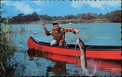 Greetings From Lachute, Quebec (SwellMap) Tags: postcard vintage retro pc chrome 50s 60s sixties fifties roadside midcentury populuxe atomicage nostalgia americana kitsch animal animals wildlife pose posing fish fishing hunting