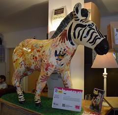 'Zeb' Zany Zebra (graham19492000) Tags: southampton zanyzebra zeb
