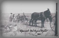 """Hot August Nights"" before- (Arlene Castro) Tags: bwphoto family washingtonstate grandparents horses oldwashbucket antiquewagon marvinwasborn"