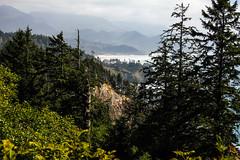 oregon (41 of 147) (SPLTImage Inc.) Tags: oregon trip travel vacation waterfalls ecola coast westcoast nature naturephotography