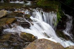 IMG_0546.jpg (ina070) Tags: ilan outdoor stone waterfall