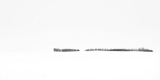 Prairie Winter VI