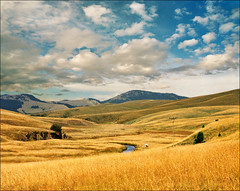 All inclusive, swimmers (Katarina 2353) Tags: summer sky field landscape europe serbia x srbija zlatibor serbiainspired