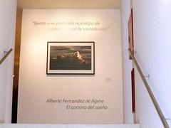 ALBERTO FERNANDEZ DE AGIRRE  (12)