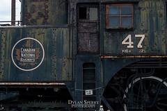 DSC_0779 (DylanSperryPhotography) Tags: sky art train point amazing nikon artist view artistic pennsylvania trains pa artsy lightroom aperature