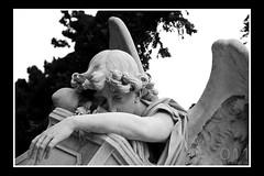 Cementerio Central de Montevideo - Uruguay (011 Fotografía) Tags: cemetery canon uruguay eos cementerio muerte viajes vida montevideo 60d