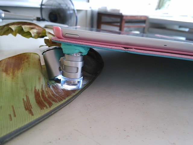 iPad黏顯微鏡_04