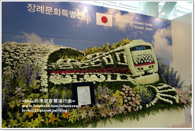 고양국제꽃박람회036
