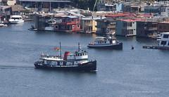 2510_KOKUA and OWL (lg evans) Tags: tugboat lakeunion tug 1943 kokua lgevans maritimeimages lgevans maritimefestivalfamilyfunday2015
