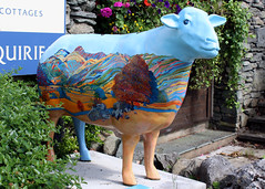 Ewe with a view (Cumberland Patriot) Tags: with view sheep heart outdoor painted go lakes cumbria trust ambleside calvert the ewe cumbrian herdwick a of goherdwick