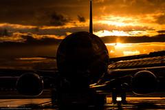 Rainy Sunset (Morten Hansen Aviation photography) Tags: sunset orange rain airplane aircraft aviation air norwegian shuttle ng boeing airlines 800 spotting 737