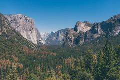 Yosemite (bruit_silencieux) Tags: yosemite mountains usa california californie unitedstates outdoor landscape sonyalpha7 sony sigma35mm14art nationalpark elcapitan tunnelview