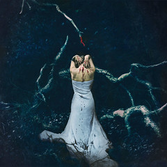 we all have blood on our hands (brookeshaden) Tags: selfportrait fineartphotography darkart conceptualphotography weallhavebloodonourhands brookeshaden