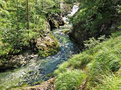 Hike in the Weibach-gorge (rotraud_71) Tags: bavaria bayern weisbach mauthusl schneizlreuth rocks water trees berchtesgadenerland weisbachschlucht
