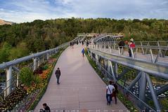 On the top of Tabiat Bridge (T   J  - Eid Mubarak) Tags: iran tehran d750 nikon teeje nikon2470mmf28
