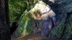 EN UNA PIEDRA GRABE TU NOMBRE. (FOTOS PARA PASAR EL RATO) Tags: bosque graffiti