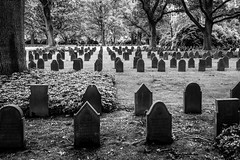 In war, there are only losers (zgr Grgey) Tags: bw lines 35mm nikon cemetary tombstone hamburg worldwari d750 ohlsdorf 2016 samyang
