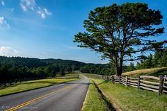Blue Ridge Parkway (Kelly Lambert Photography) Tags: country mountains blueridgemountains nc northcarolina blueridgeparkway