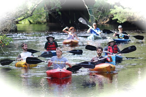 A groupon the Batsto River--New Jersey pinelands