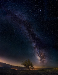 In The End!! (acipinarli) Tags: milkyway astro panoramic astrophotography nightsky galaxy lonelytree alone tree grass stars