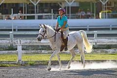 IMG_2563 (SJH Foto) Tags: horse show hunter jumper class girls teenage teen riders action shot tweens