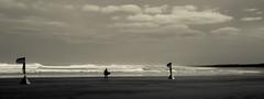 Black sands surfer B&W Wallpaper - DSC2255 NZ ilce A7II 16x9 (cleansurf2) Tags: black white bw monotone landscape seascape beach coast surf surfer wind sand minimual mirrorless minimalism background backdrop screensaver scene scale 4k ultra 16x9 widescreen wallpaper sony ilce6000 ilce sea mood newzealand lines dark surreal arty water waves waterscape 3840 resolution emount
