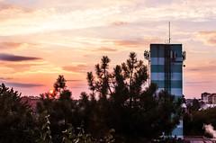 222/365 (goran1101) Tags: nikon d5100 nikkor 35mm color colour colors colours colorful pink sunset clouds sky trees abac sabac serbia