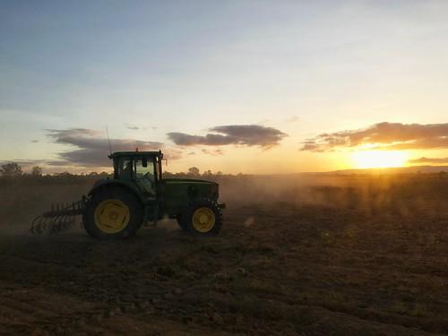 farm life