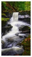 Waterfall in the dell (hollowsjohn) Tags: waterfall water