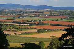 Looking down on a Herefordshire landscape (Peter J. Ham.) Tags: hereford herefordshire england countryside light colour fields farm fruit autumn fall canon harvest keats october octobre contrast beauty landscape earth land year bright octeber
