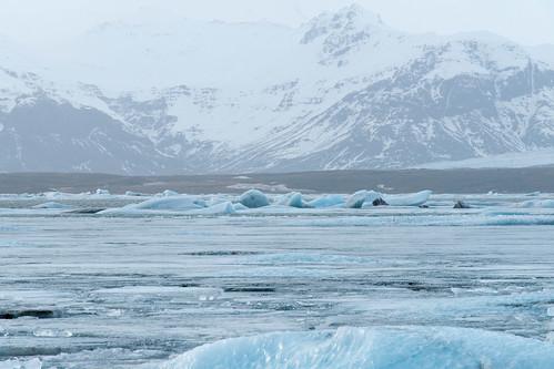 Iceland 2015 - Ice - 20150316 - DSC06534.jpg