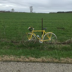Another damp ride (ddsiple) Tags: ohio yellow rural cycling spring escape jacktaylor fairfieldcounty normtaylor 1980jacktaylor