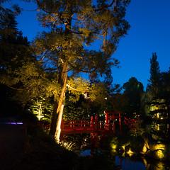 DSC05454 (regis.verger) Tags: temple zen nuit parc nocturne asiatique vgtal maulvrier