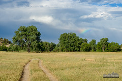 Rainbow Section (kevin-palmer) Tags: sheridan wyoming july summer afternoon tamron2470mmf28 nikond750 color colorful rainbow sky storm stormy weather clouds path circularpolarizer green trees grass welchranchrecreationarea