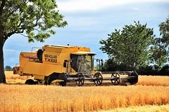 Gathering the Harvest (Paul Thackray) Tags: yorkshire thorner ellerkerlane combinedharvester corn 2016