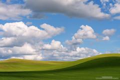 Shades (michael ryan photography) Tags: blue color green clouds washington shadows wheat shades hills rolling palouse easternwashington michaelryanphotography