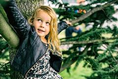 Angeline Coco climbing a tree (Merlijn Hoek) Tags: merlijnhoek merlijn hoek fotograaf fotografie photographer photography man autodidact amsterdammer nikon nikkor camera kamera full fullframe d810 nikond810 fullframedigitalslr digitalslr slr 35mmformat 36×24mm 35mm 36megapixel digitalsinglelensreflex dof depth depthoffield scherptediepte feest feestje muziek music muzik optredens event evenement evenementtfotografie eventphotography portrait portret kid kinderen kind child children