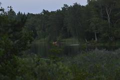 Eveningwalk by the lake (annesjoberg) Tags: sbytrsk evening walk eveningwalk nikond3200 nikonphoto