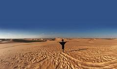 {New on TheGlobalGirl.com} The Great Sand Sea http://ift.tt/2avQ2mT (THE GLOBAL GIRL) Tags: sand sanddunes landscape desert sahara thegreatsandsea theglobalgirl ndoema globalgirl theglobalgirltravels travel wanderlust egypt africa libya libyandesert northafrica adventure siwa siwaoasis safari desertsafari travelphotography globalgirlndoema theglobalgirllifestyle globalliving globallifestyle