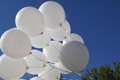 Luftballon (ingrid eulenfan) Tags: luftballon sommer blau balloon summer blue rund outdoor